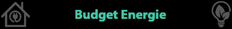 groene-energieleverancier-budget-energie