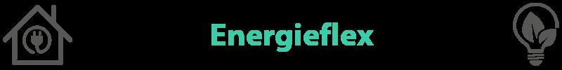 groene-energieleverancier-energieflex